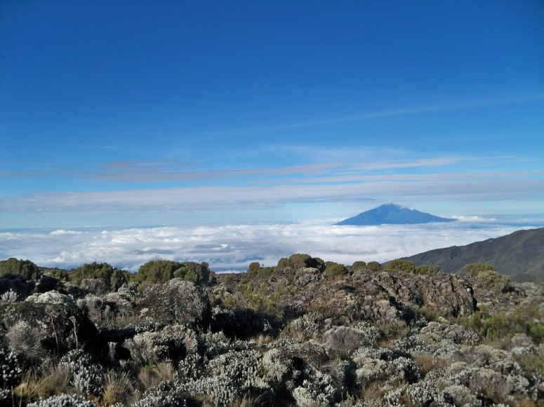 Mount Kilimanjaro 2011 057