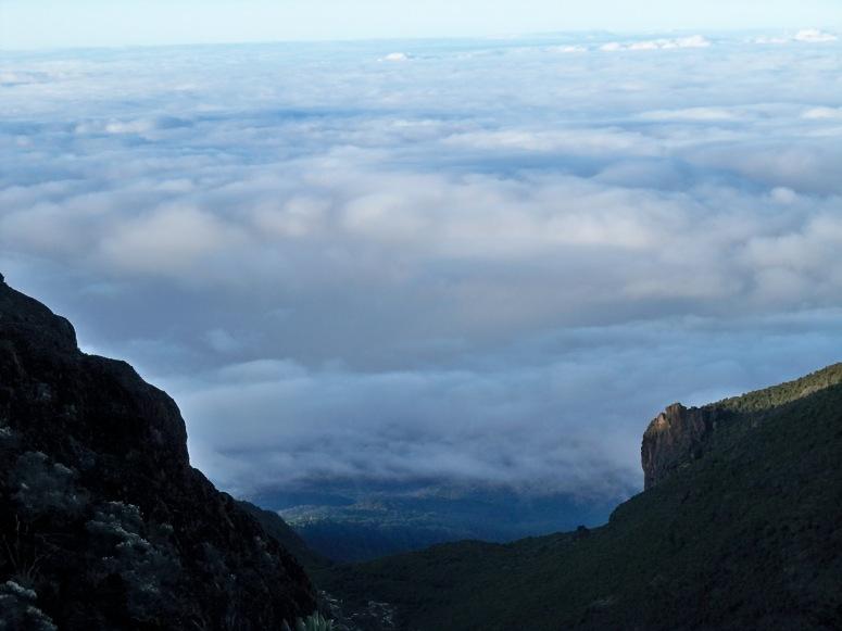 Mount Kilimanjaro 2011 098